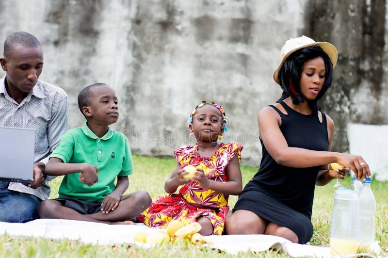 Piquenique feliz da família no parque imagem de stock royalty free