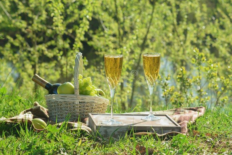 Piquenique gourmet romântico do verão na opinião lateral do parque imagem de stock royalty free