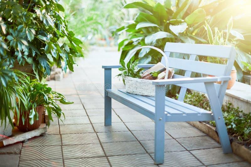 Piquenique no jardim fotografia de stock