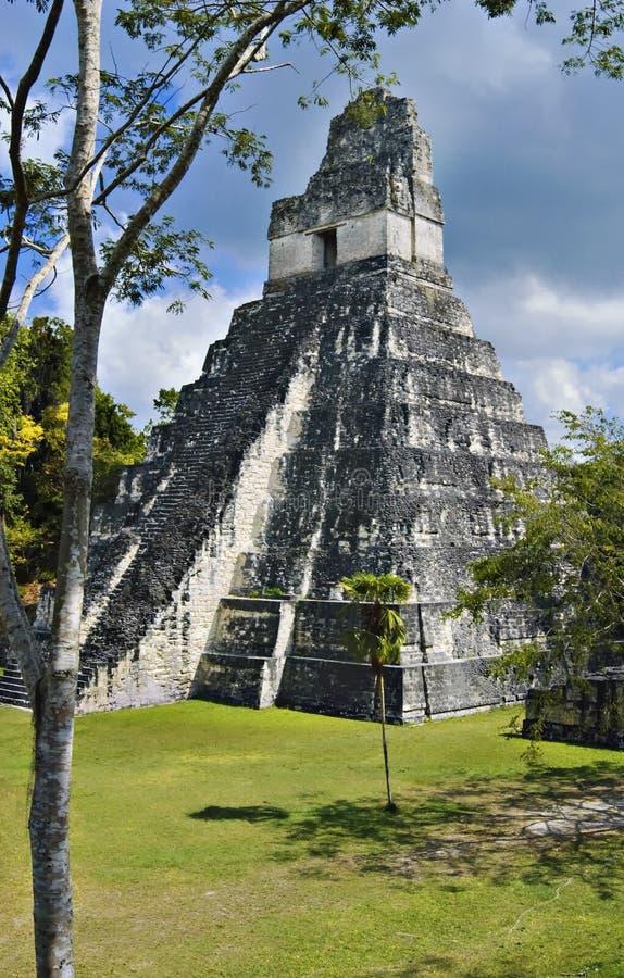Pirâmide de Tikal fotografia de stock