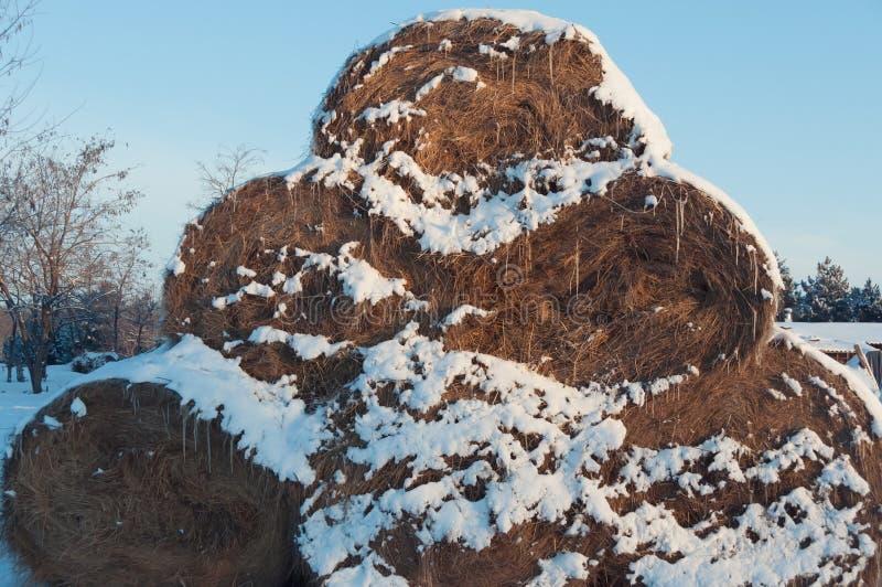 Pirâmide dos monte de feno cobertos com a neve fotos de stock