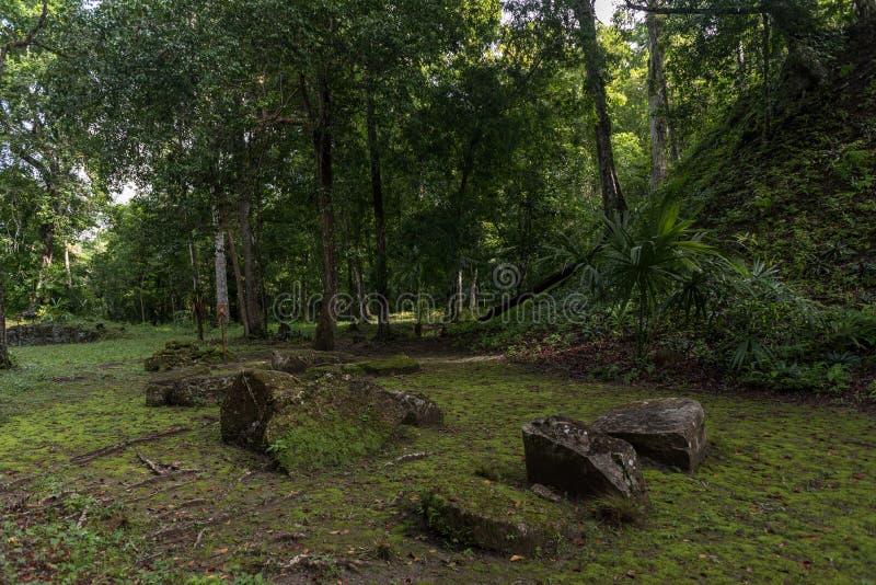 Pirâmide e o templo no parque de Tikal Objeto Sightseeing na Guatemala com templos maias e ruínas do Ceremonial Tikal é um antigo fotografia de stock