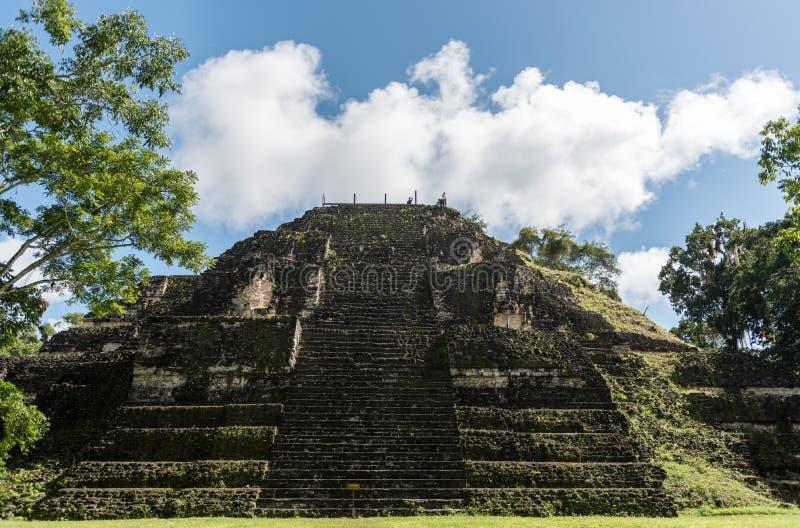 Pirâmide e o templo no parque de Tikal Objeto Sightseeing na Guatemala com templos maias e ruínas do Ceremonial Tikal é um antigo foto de stock