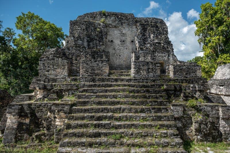 Pirâmide e o templo no parque de Tikal Objeto Sightseeing na Guatemala com templos maias e ruínas do Ceremonial Tikal é um antigo imagem de stock