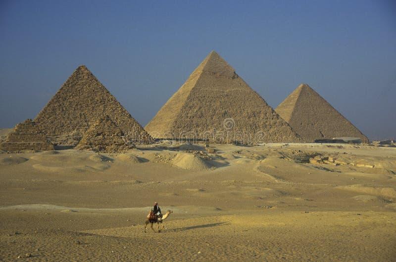PIRÂMIDES DE ÁFRICA EGIPTO O CAIRO GIZA foto de stock royalty free