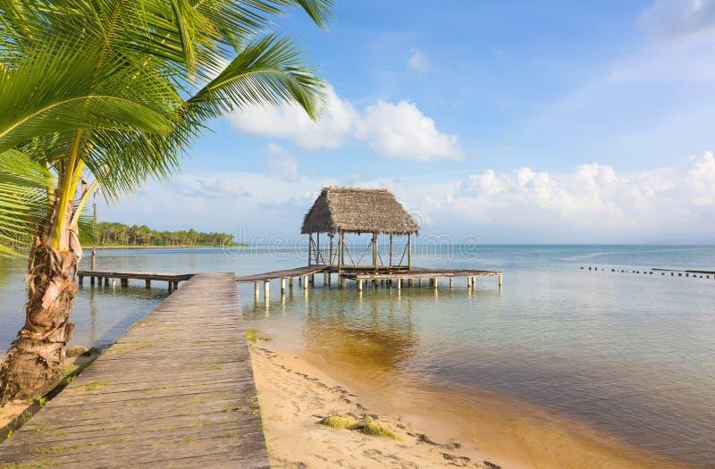 Pir på den Boca del Drago stranden, Panama arkivfoton