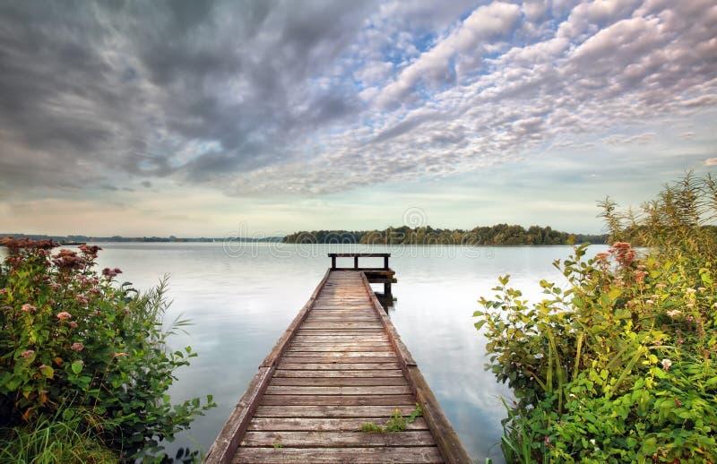 Pir på den stora sjön och vildblommor fotografering för bildbyråer