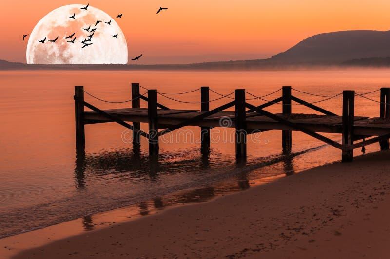 Pir på stranden på soluppgång med toppna måne- och flygfåglar royaltyfri fotografi