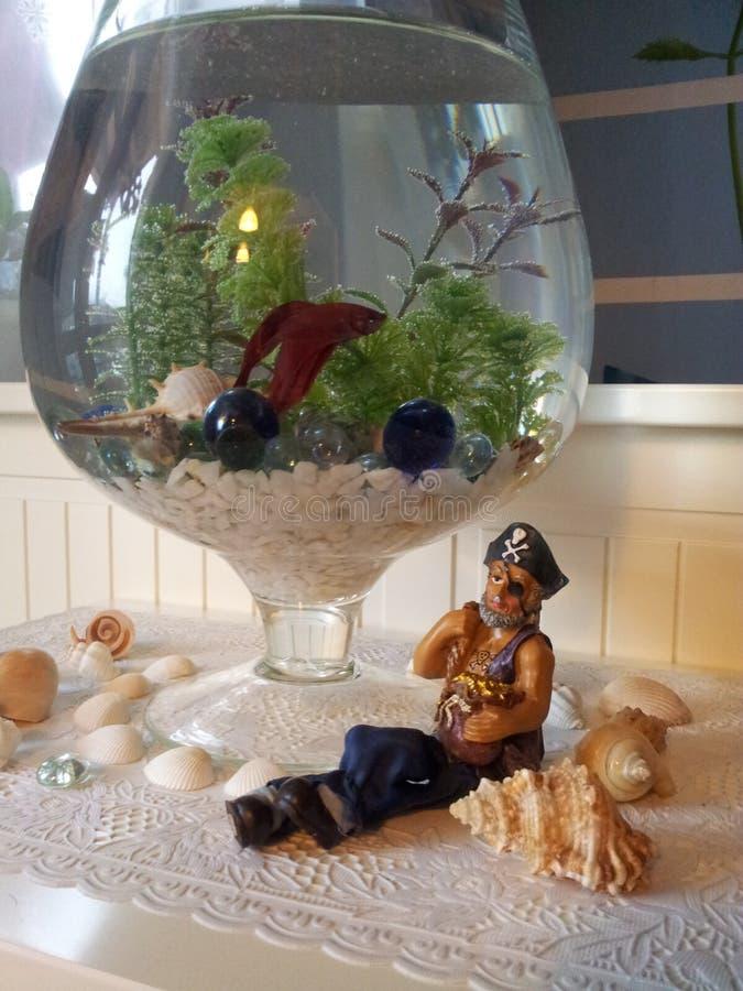 Piraat en vissen stock afbeelding
