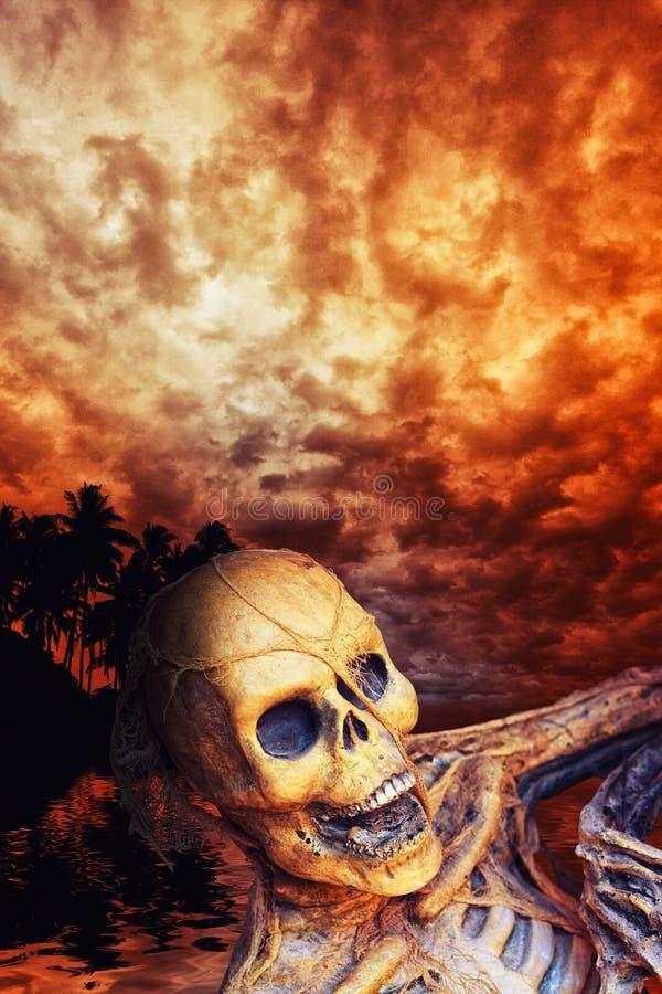 Piraatskelet in caribbeans royalty-vrije illustratie