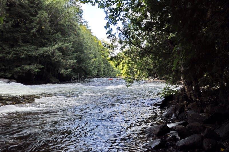 Piragüista desconocido, whitewater canoeing en el coto salvaje del agua de Minden imágenes de archivo libres de regalías