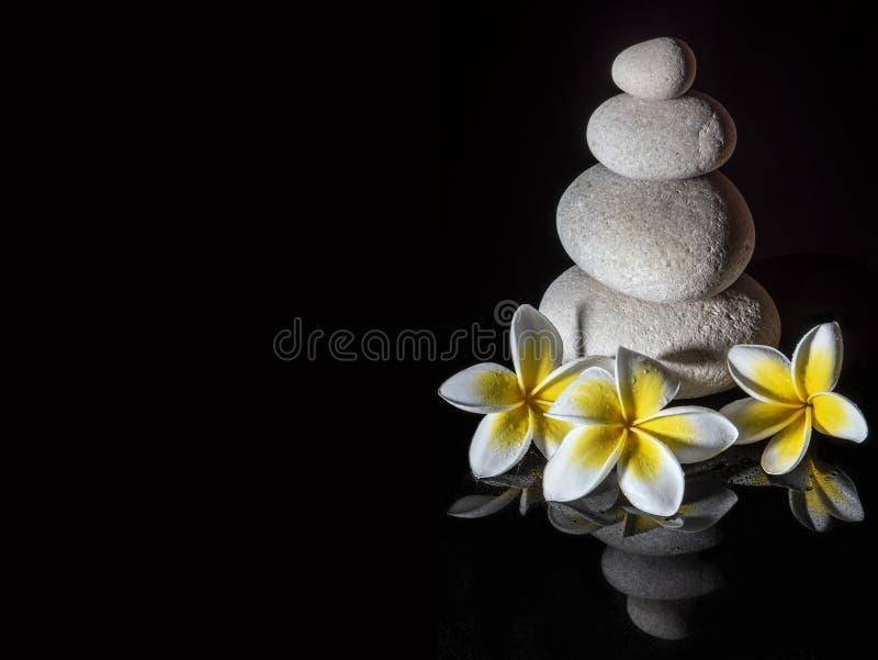 Piramide della pietra di zen con tre fiori delicati bianchi di plumeria di frangapani sui precedenti riflettenti neri fotografie stock libere da diritti