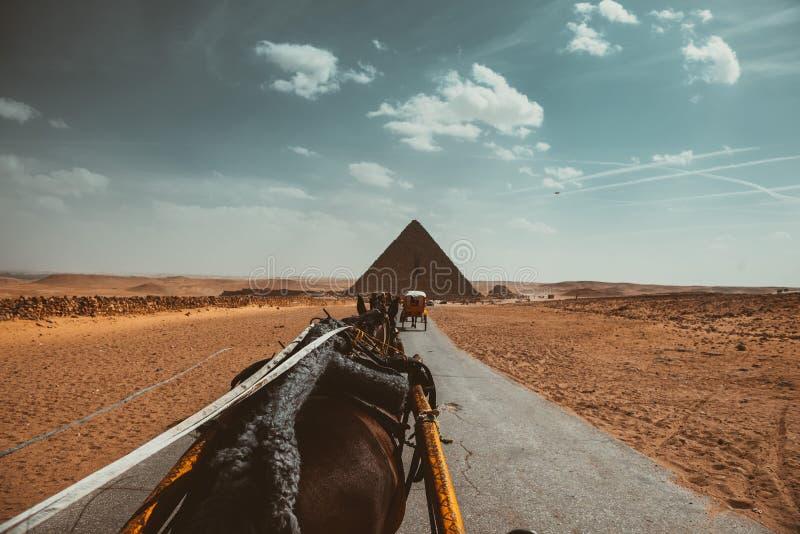 piramide, Egitto, modo, cielo, nuvole, deserto, sabbia, cavalli fotografia stock