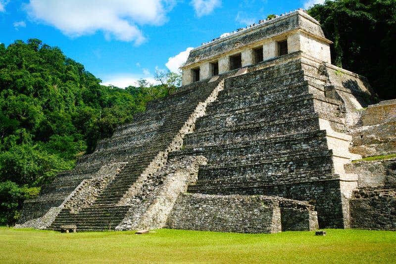 Piramide nella foresta, tempio delle iscrizioni Palenque, Messico fotografie stock libere da diritti