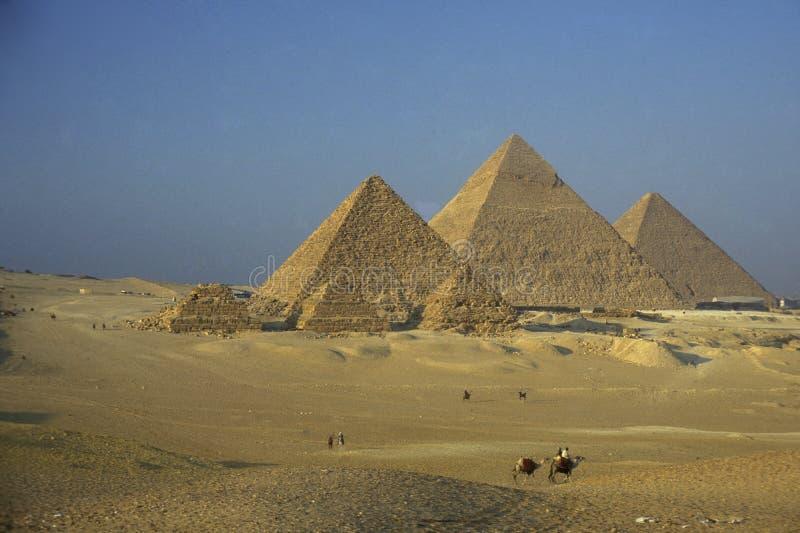 PIRAMIDI DELL'AFRICA EGITTO IL CAIRO GIZA fotografie stock libere da diritti