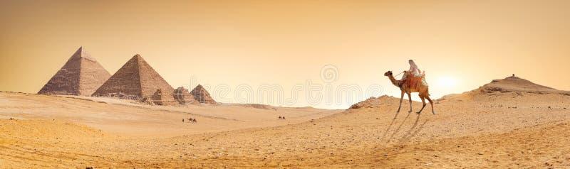 piramidy pustyni fotografia royalty free