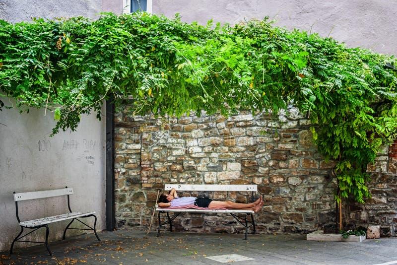 Piran, Eslovenia 26 de agosto de 2012 El hombre duerme en un banco en la yarda al abrigo de las plantas que suben verdes fotos de archivo libres de regalías