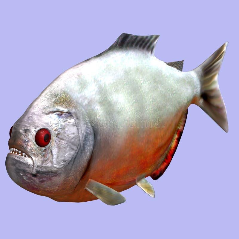 piranha royalty ilustracja