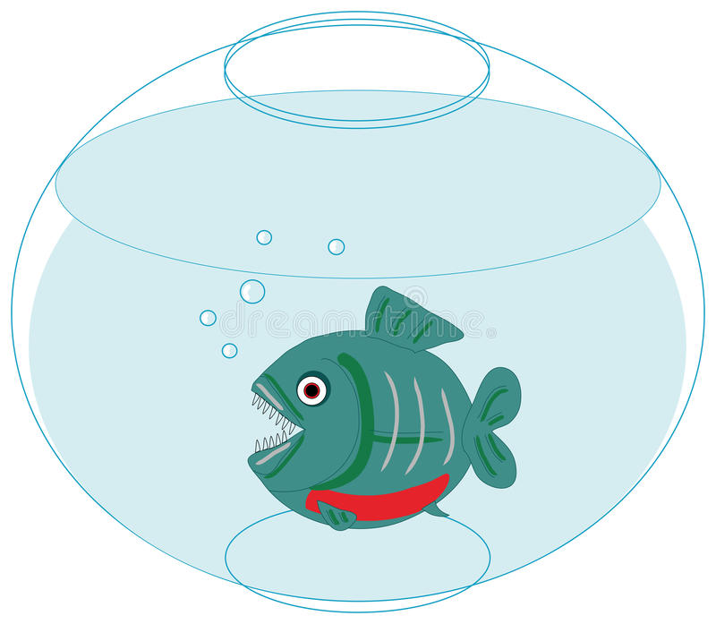 Download Piranha In Love In A Fishbowl Stock Vector - Image: 22840563