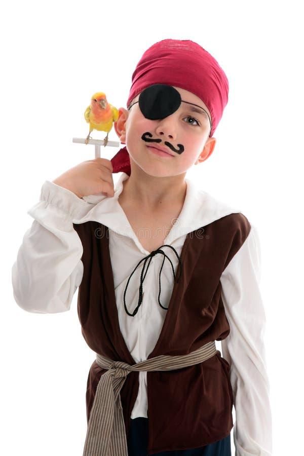Pirat mit Haustiervogel stockbilder