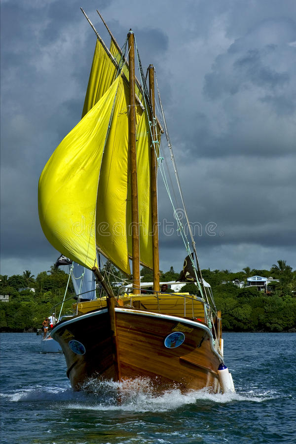 pirata e litoral nebulosos em Maurícia fotografia de stock royalty free