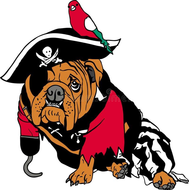 Pirata pies obrazy royalty free