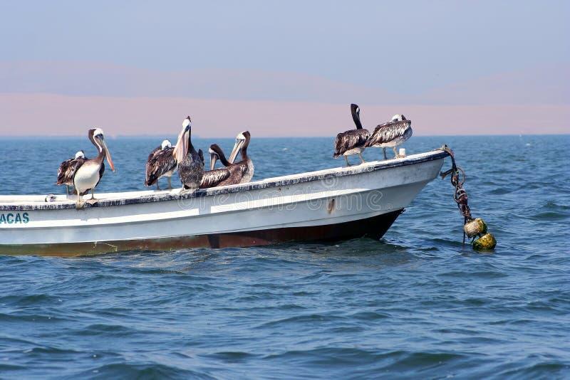 Piratas del caribean:-) fotos de archivo libres de regalías