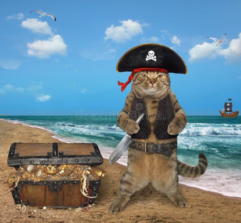 Pirate de chat avec des trésors sur le bord de la mer photographie stock libre de droits