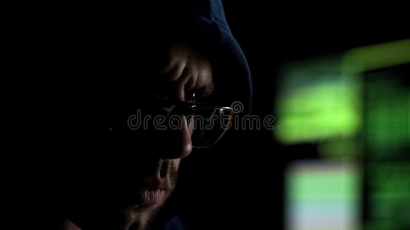 Pirate informatique en verres lisant attentivement l'information coulée de l'Internet profond photo stock