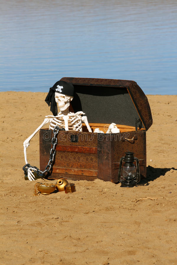 Download Pirate Skeleton stock photo. Image of shore, chest, halloween - 24464946