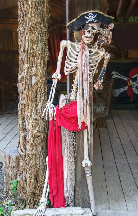 Pirate skeleton with peg leg and eye patch and hat and dead parrot on shoulder propped on tree trunk pillar with pirate flag in royalty free stock photography