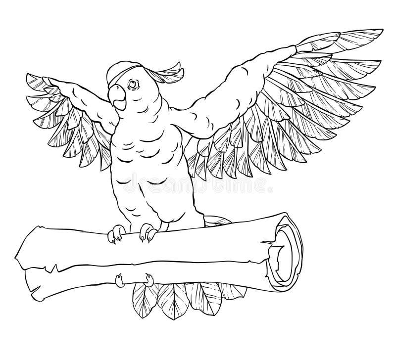 Piratee el loro en vuelo con las alas extendidas y la moneda en sus patas stock de ilustración