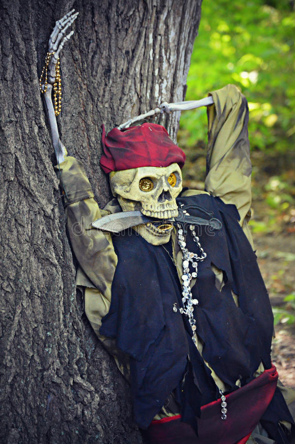 Piratenskelett lizenzfreie stockfotos