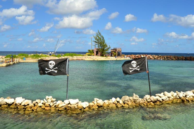 Piratkopiera flaggor arkivbild