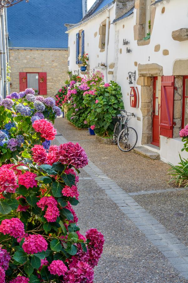 Piriac-sur-Mer flowered village at the seaside in Brittany, France stock image