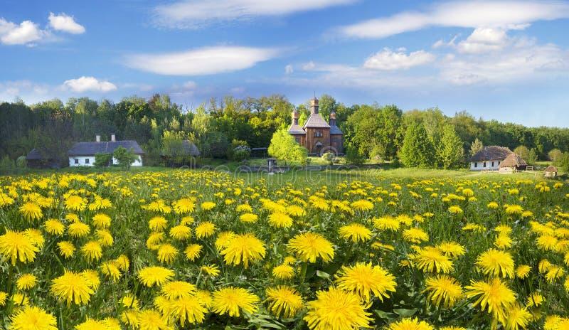 Pirogiv在一个春日 库存图片