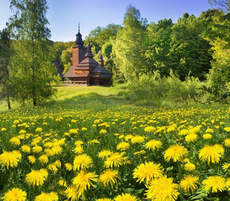 Pirogiv在一个春日 免版税库存照片