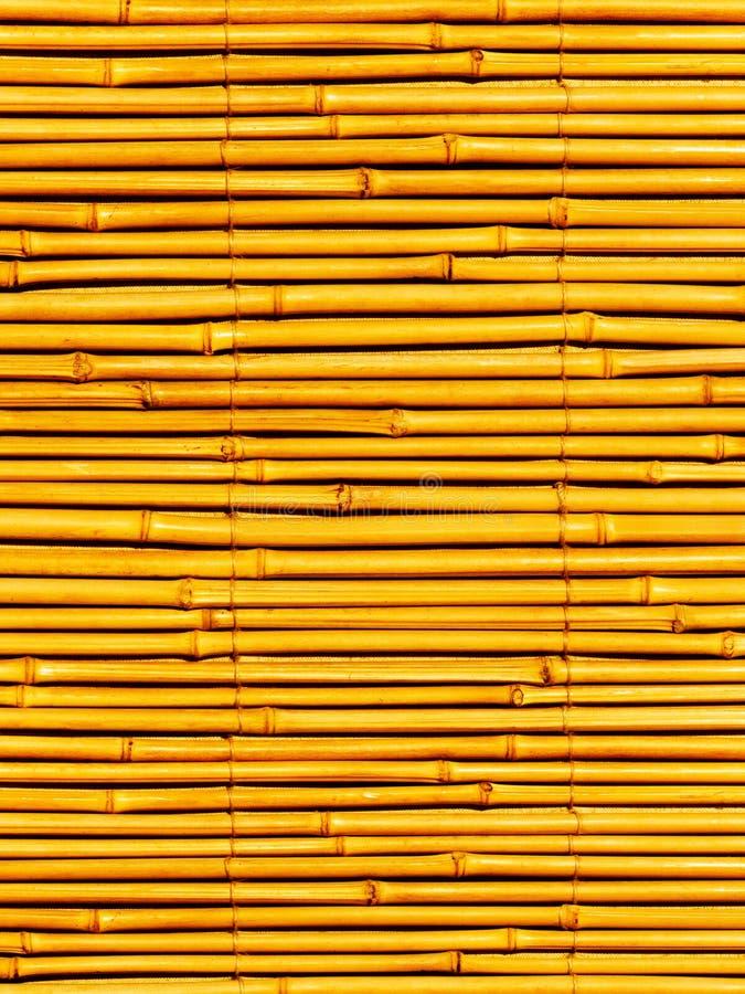 Pirscht eine Anlage ein Bambus an