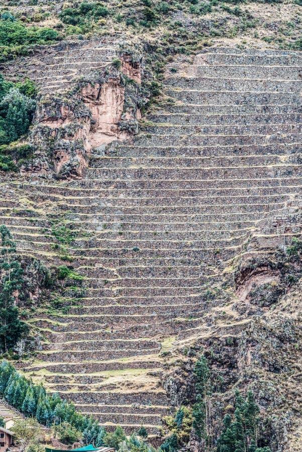 Pisac fördärvar peruanen Anderna Cuzco Peru arkivfoto