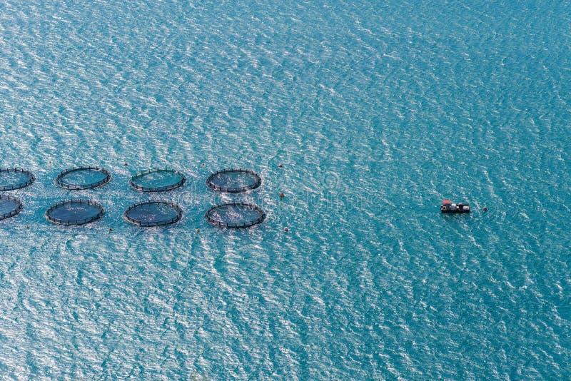 Piscicultura no mar Mediterrâneo a ilha de Kefalonia, Grécia imagens de stock