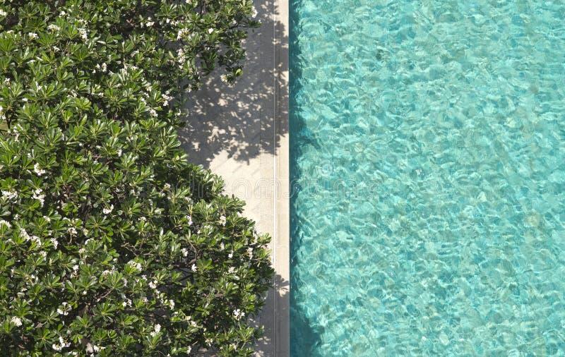 Download Piscina fotografia stock. Immagine di viaggio, lago, resto - 30829664