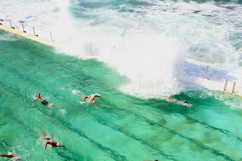 Piscina cerca del océano en Sydney imagen de archivo
