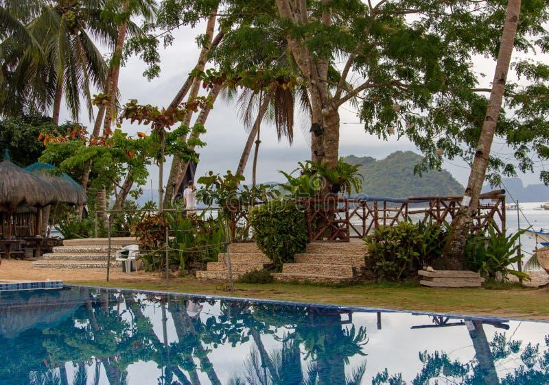 Piscina com as palmeiras no hotel de luxo Recurso tropical na ilha Associação no fundo do seascape Exótico relaxe imagem de stock