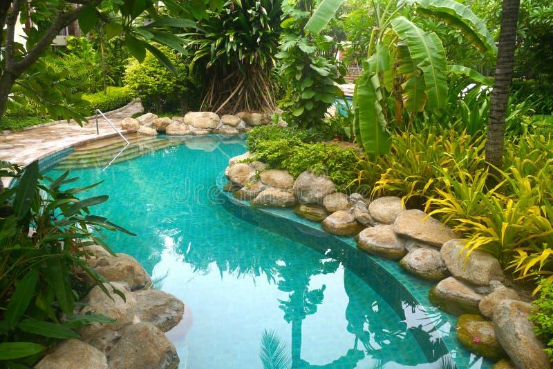 Piscina com decoração do jardim imagem de stock royalty free