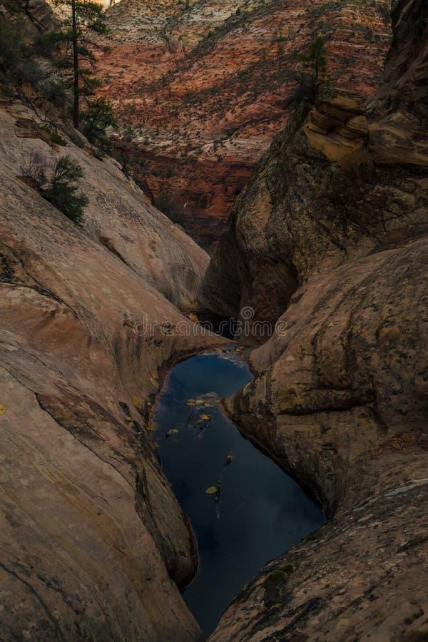 Piscina de agua el barranco cerca ocultado en Zion National Park fotografía de archivo