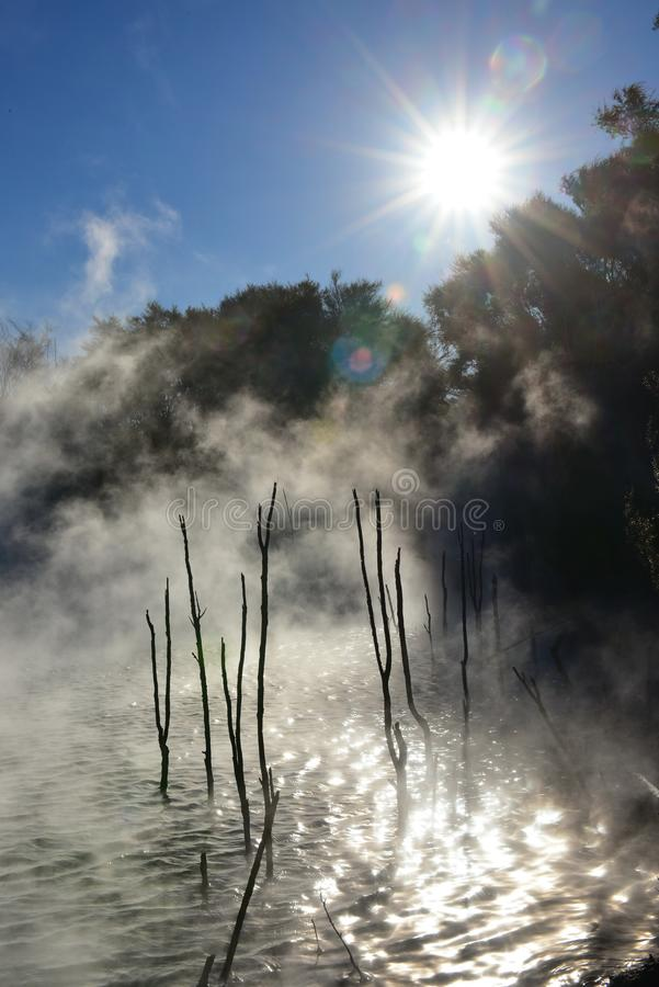 Piscina de cocido al vapor al vapor caliente en el parque de Kuirau, el parque público geotérmico de Nueva Zelanda foto de archivo libre de regalías