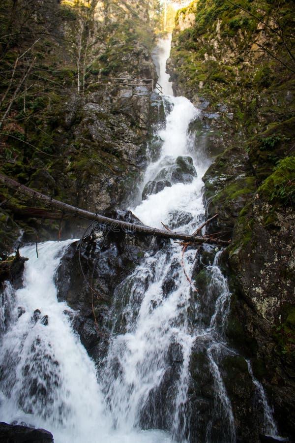 Piscina de las caídas de los vientos, Washington de la garganta del río Columbia fotos de archivo