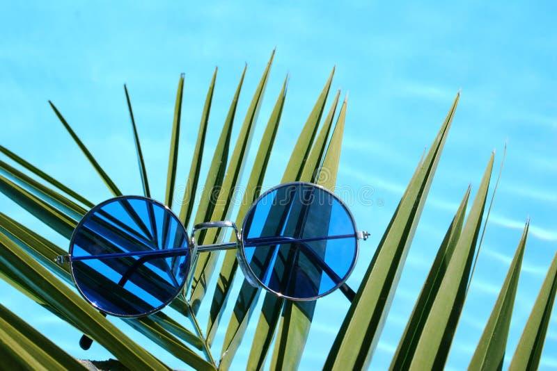 Piscina de las gafas de sol fotos de archivo