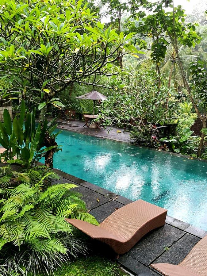 Piscina del chalet del hotel selecto del ubud de Bali imagen de archivo