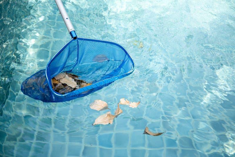 Piscina di pulizia delle foglie cadute con la rete blu della scrematrice fotografie stock